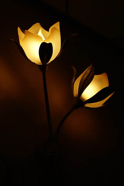 decor lighting photo